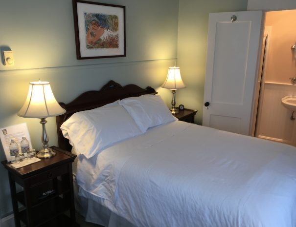 Blue Room - Full size pillow top bed.